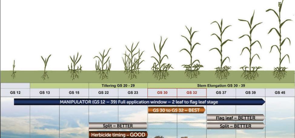 Wheat-chart1-Manipulator_DarrenClark.png